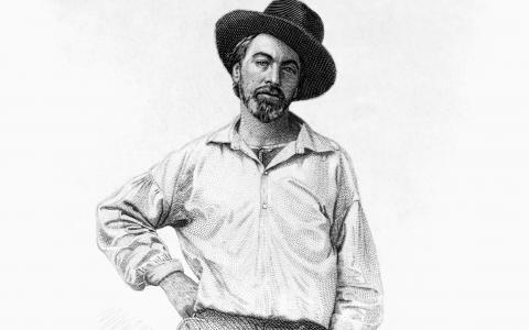 Illustration of Walt Whitman